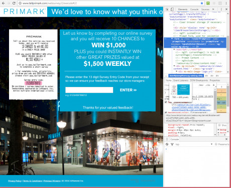 Primark websurvey review